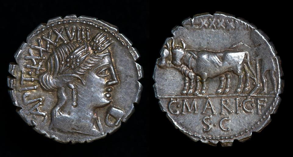 C. Marius C. f. Capito, 81 BC, C. 378/1c