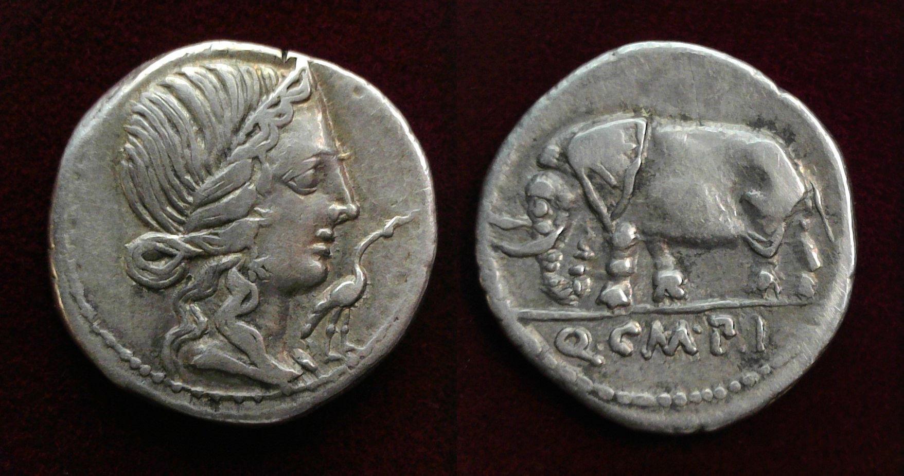 Q. Caecilius Metellus Pius, 81 BC, 374/1