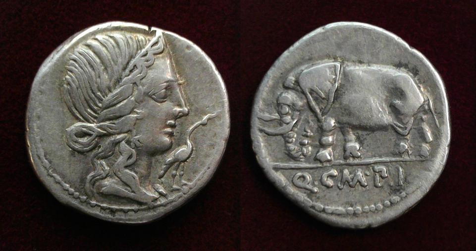 Q. Caecilius Metellus Pius, 81 BC, C. 374/1