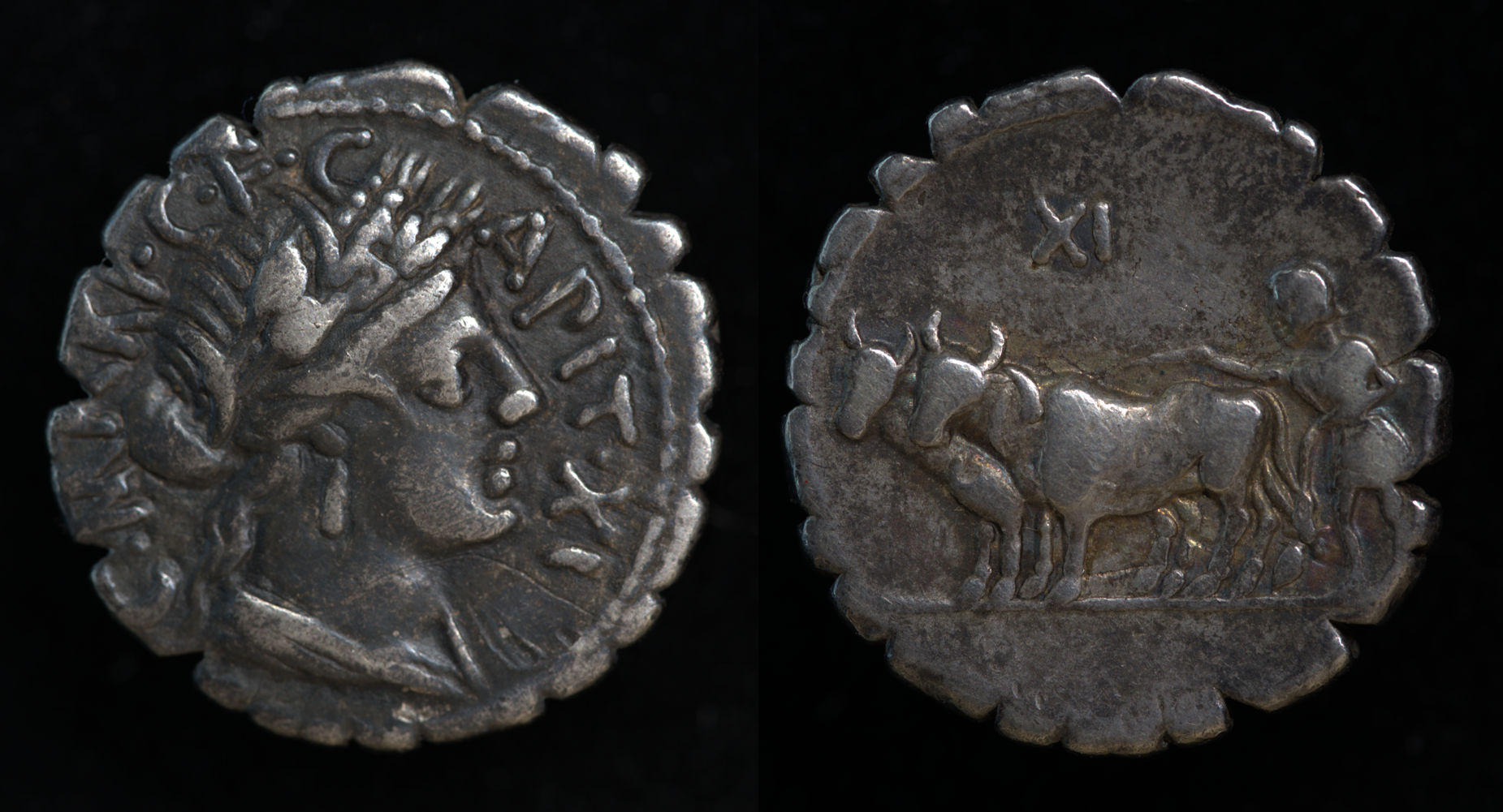 C. Marius C.f. Capito, 81 BC, 378/1a