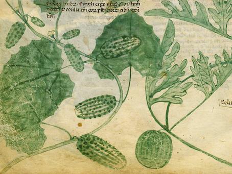 Tiberius' Cucumbers