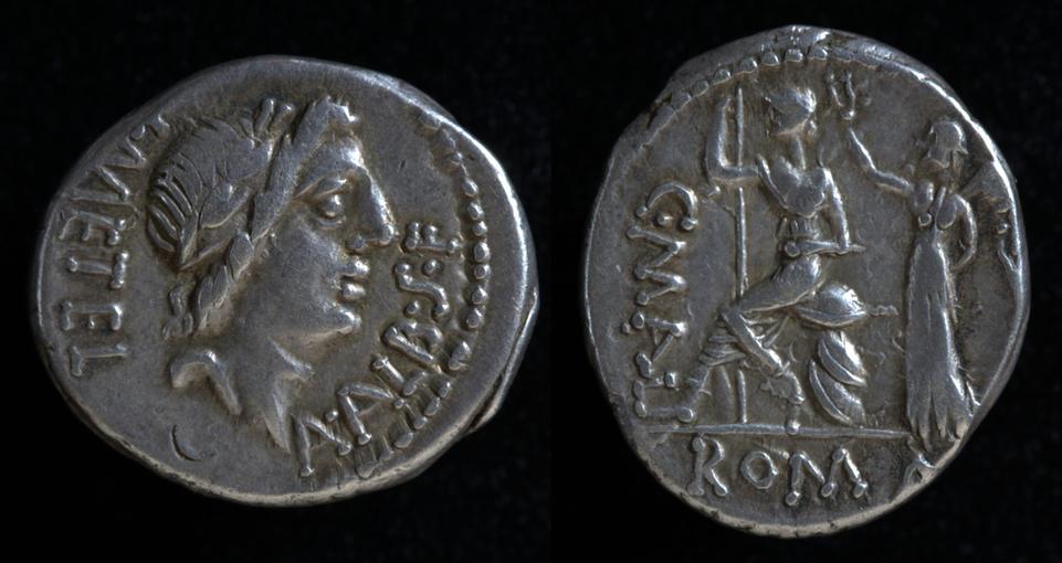 C. Publicius Malleolus, 96 BC, C. 335/1a