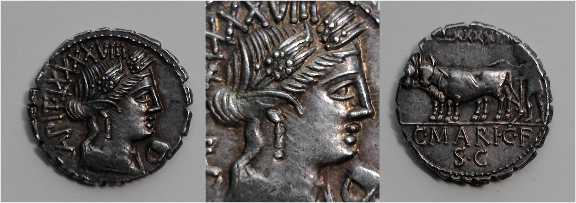 C. Marius C. f. Capito, 81 BC, C.378/1c