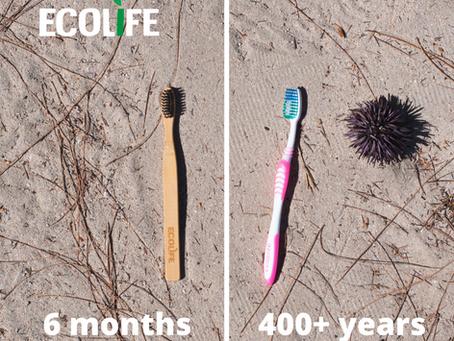 Toothbrush - Bamboo V/S Plastic