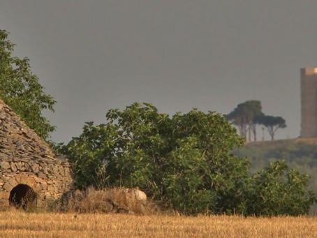 The Altopiano delle Murge - Murge Plateau