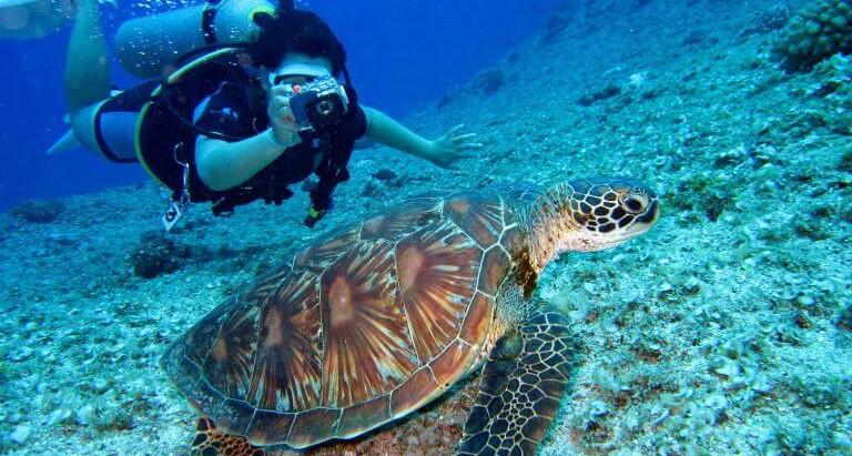Scuba Diving in Puglia
