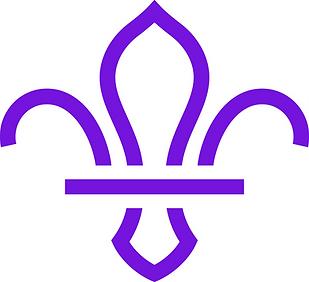 fleur-de-lis-marque-purple-jpg_edited.pn