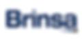 Logo Brinsa.png