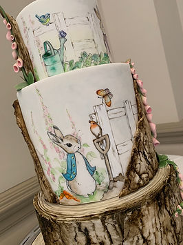 Hand painted Beatrix Potter cake.