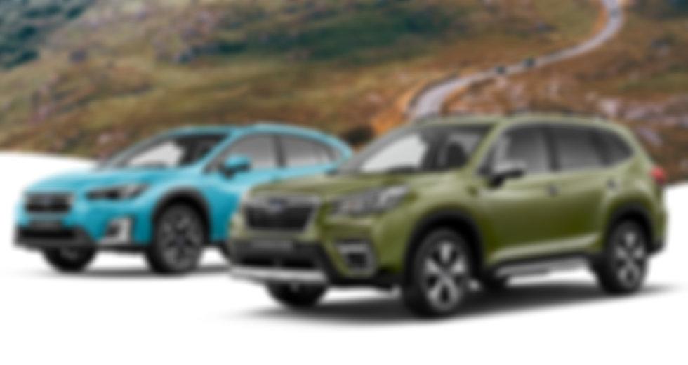Subaru Experience