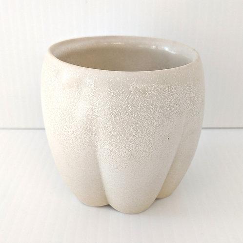 Buttercup Flower Cup