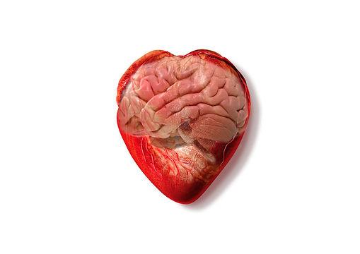 cerebrodecorazón.jpg