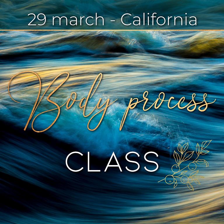 Body Process Class