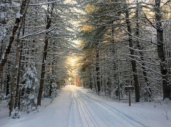 snow2018_KeithRamos.jpg