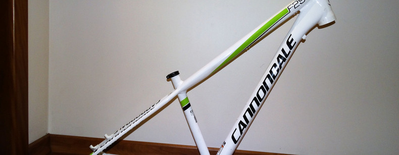 Cannondale F29 small (01).JPG