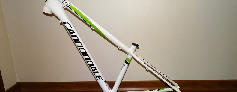 Cannondale F29 small (02).JPG