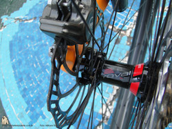 22 Specialized Epic WC 2015 (41)