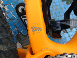 05 Specialized Epic WC 2015 (11)