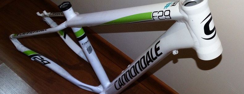 Cannondale F29 small (04).JPG