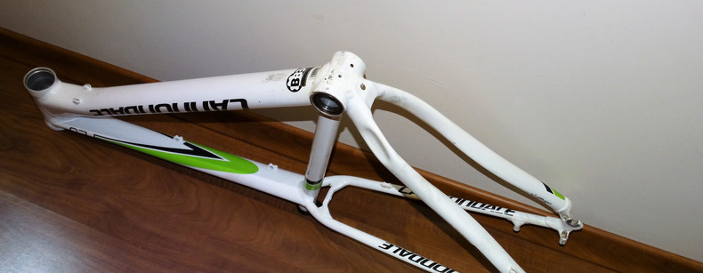 Cannondale F29 small (08).JPG