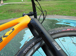 04 Specialized Epic WC 2015 (10)03 Specialized Epic WC 2015 (09)