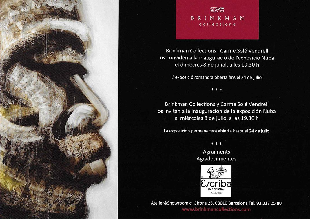 Exposició Brinkman