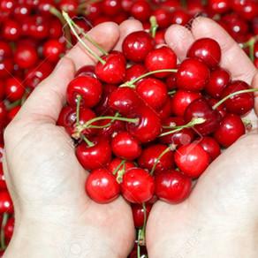 The benefits of Montmorency Tart Cherries