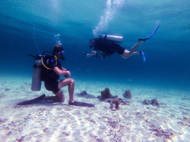 Teaching in water.jpg