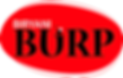 burp%20logo_edited.png