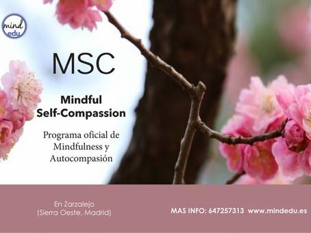 Mindfulness y autocompasión: nueva edición en la sierra de Madrid