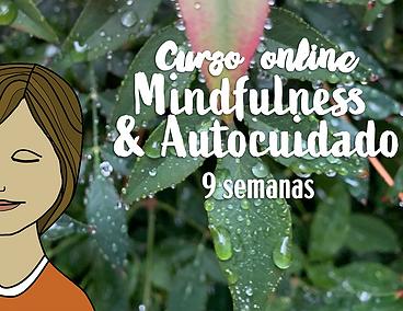 Portada-curso-MindAuto-blog.png