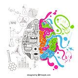 Brain_color.jpg