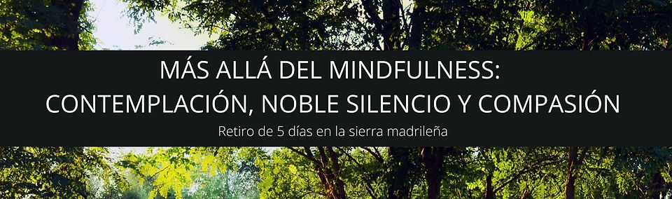 MÁS ALLÁ DEL MINDFULNESS NOBLE SILENCIO,