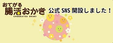 公式SNSバナー.png