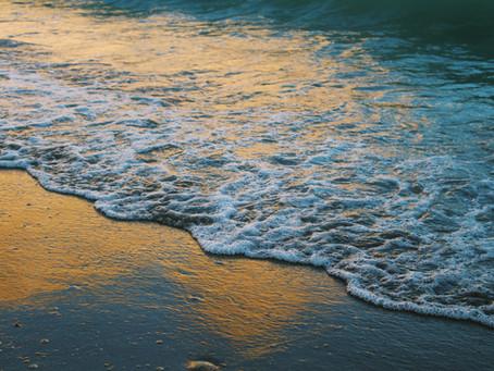 La práctica de la atención plena y los océanos