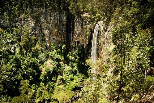 Gold Coast Waterfalls Day Tour