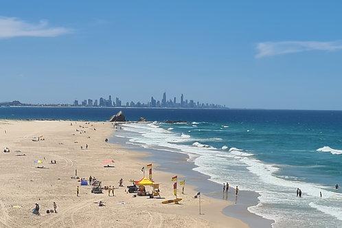Gold Coast Beaches Day Tour