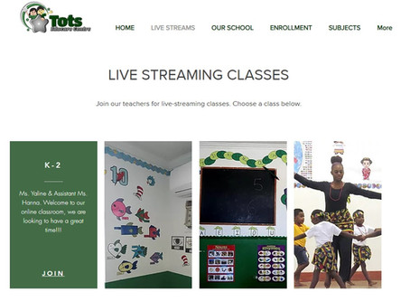 Why have Live-Streaming Classes for Bahamian Schools become so vital?