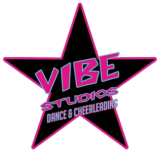 Vibe Studios Masterbrand No Background.p