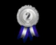 Medalha de prata.png