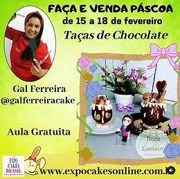 GAL FERREIRA 2.jpg