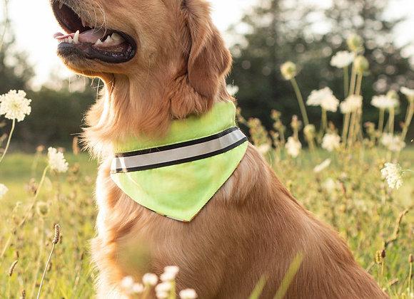 Yellow Neon Dog Bandana
