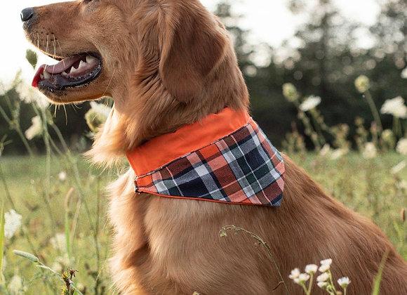Orange neon dog bandana