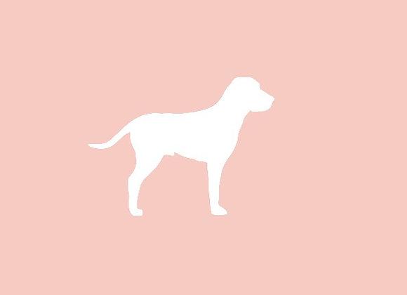Dog Bandana (Scrunchie Optional)