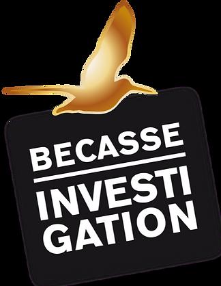 Logo BI.png