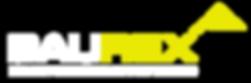 logo1 BauRex.png