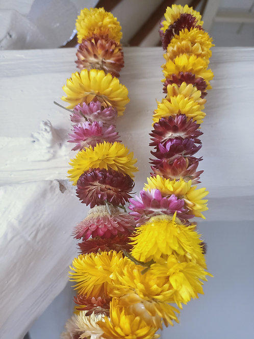 Droogbloemen slinger India