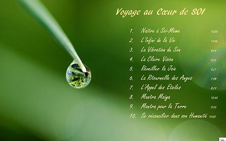 Voyage au Coeur de Soi couverture_edited