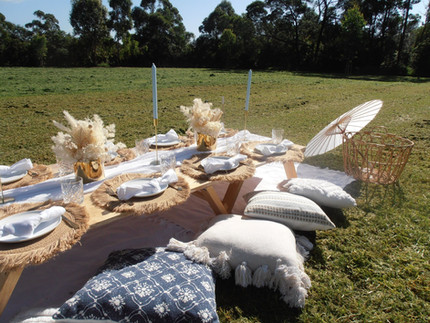 Blue Oasis Themed Picnic