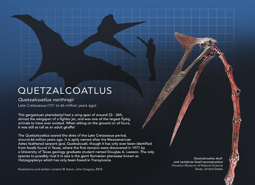 Quetzalcoatlus_info graphic_5x7.jpg